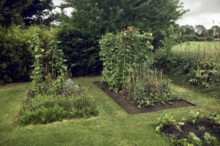 See more at Can This Garden Be Saved: 'My Vegetable Garden Looks Messy'. Photograph by Jim Powell.