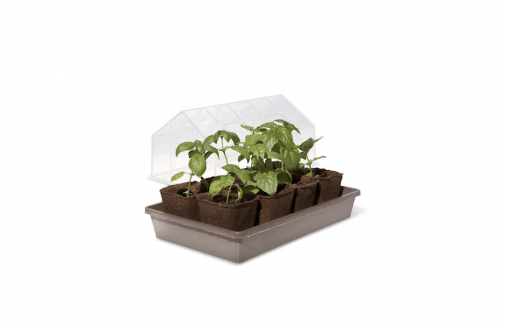 A miniTabletop Greenhouse has a vented cover; $.95 from Gardener&#8