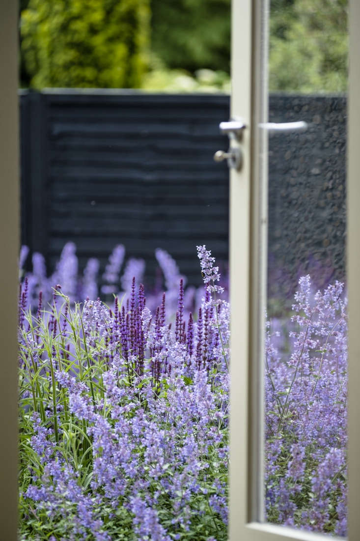 """""""Consider what you will see when you look out of the windows or come out of the door,"""" advises the author. """"If you have a favorite plant or combination you are excited about, place it where you will see it most."""""""