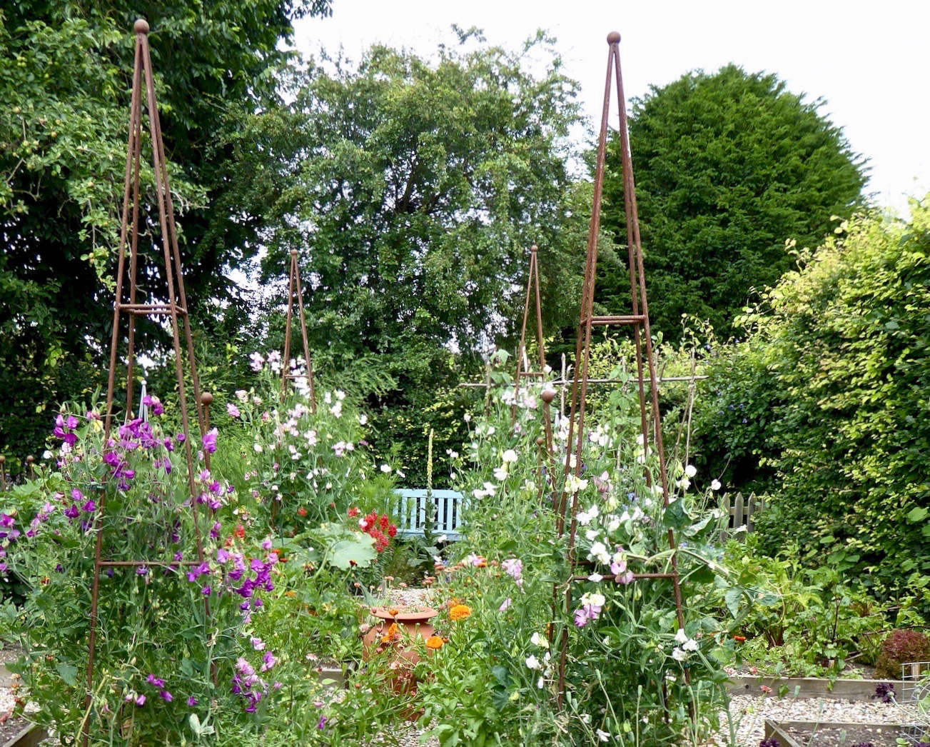 For more of this garden, see Before & After: A Kitchen Garden in Sussex, England. Photograph by Clare Coulson.
