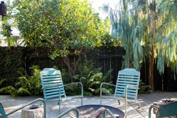 Painted chairs echo the color of the foliage on the Kashmir cypress trees.