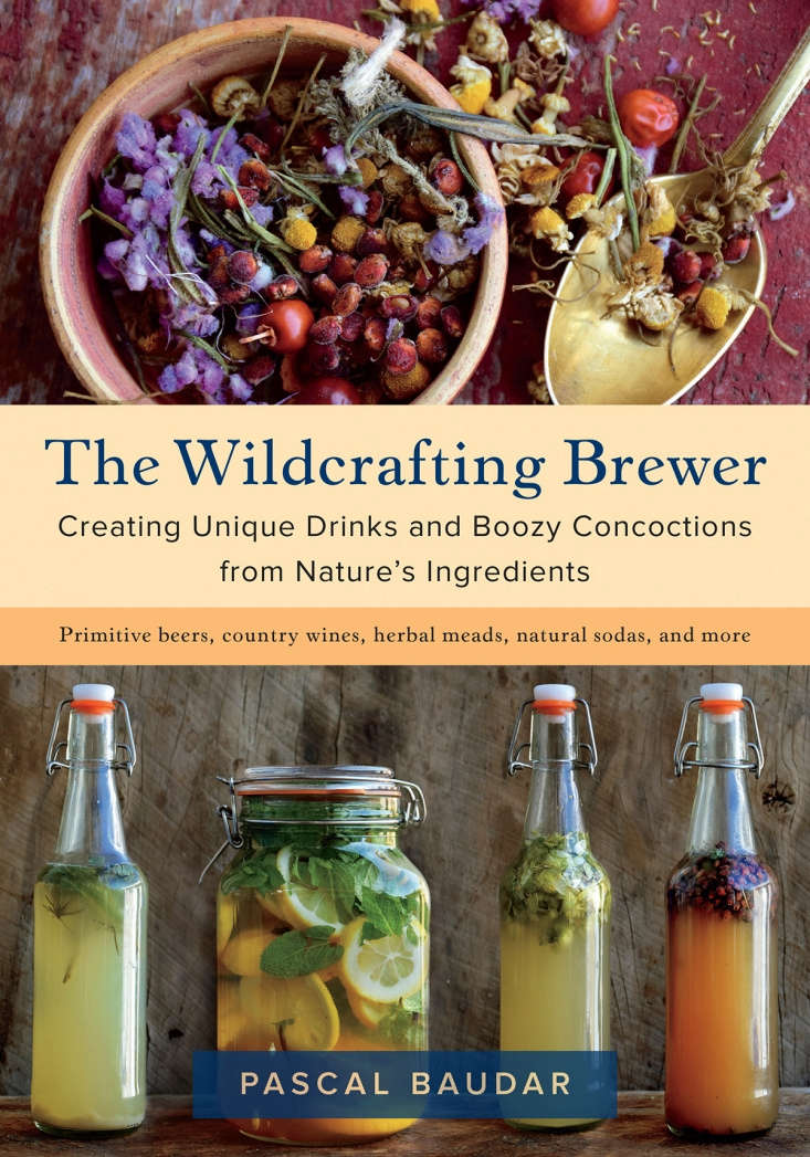The Wildcrafting Brewer is $