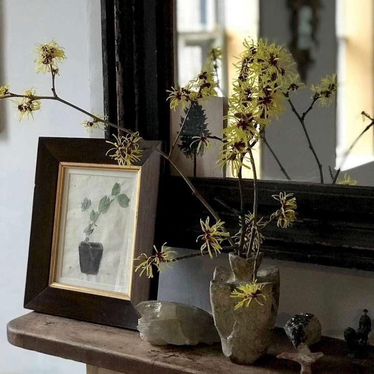 Garden designer Miranda Brooks&#8\2\17;s winter-flowering branches evoke spring on her Brooklyn mantel. See more at @miranda.brooks.