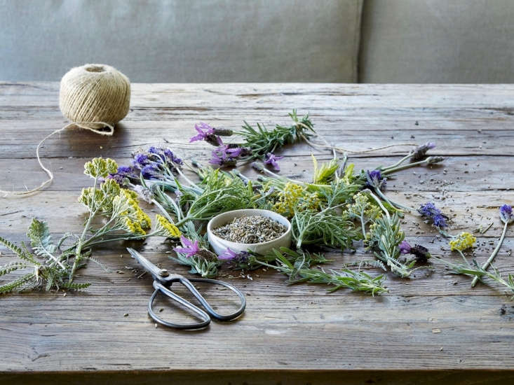 Dried lavender flowers (in the bowl) and other aromatics such as yellow Achillea pair well in potpourri. See tips for making your own herbal sachets in DIY: Modern Mothballs (No Chemicals Included). Photograph by Aya Brackett.
