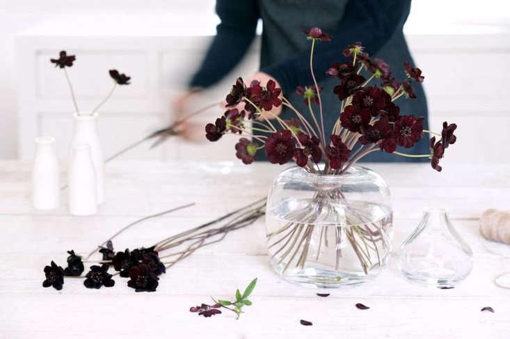 Craddock also hosts bespoke floral workshops. For information, see Philippa Craddock.