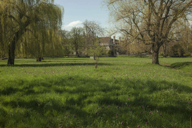 A view of the cloister across the water meadow at Magdalen College.