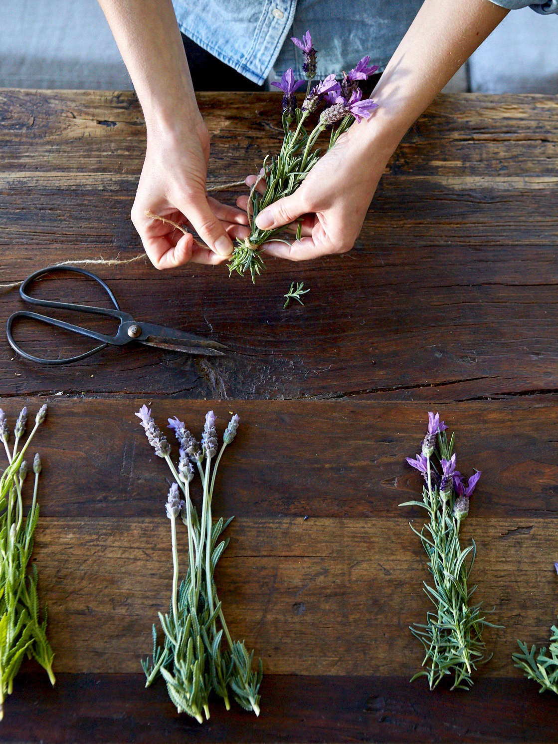 The other day at my house we experimented with making dried herbs with Spanish lavender flowers; Meredith secured bundles with twine. (Watch for our upcoming post on dried herb bundles.) Photograph by Aya Brackett.