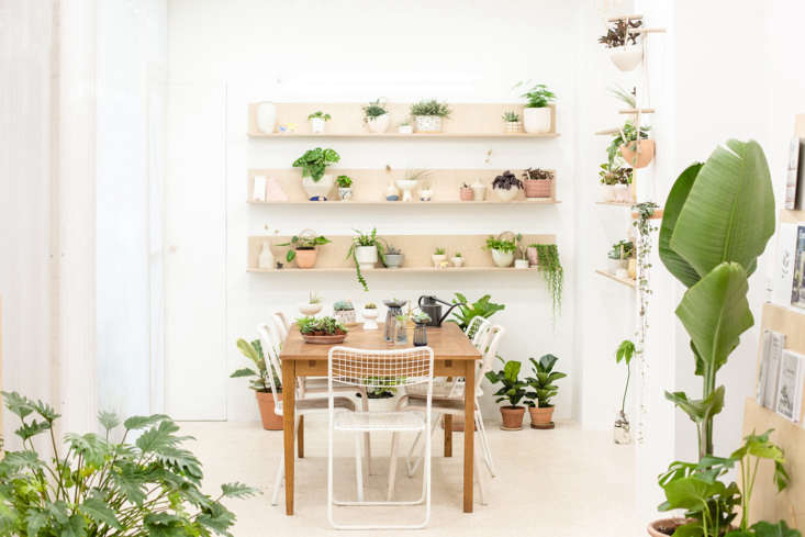 A table and comfortable chairs invite shoppers to flip through the horticultural journals and gardening books that the shop sells.