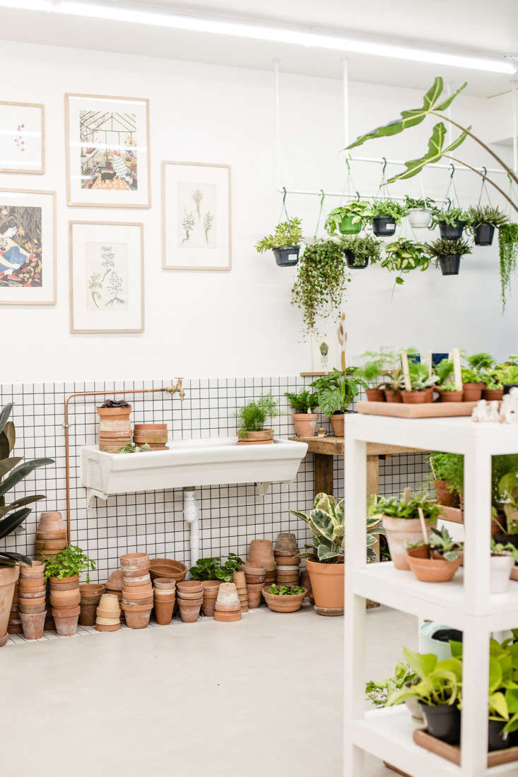 Tiled walls and exposed copper plumbing: Leaf is a houseplant laboratory.