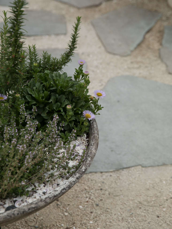 A Willy Guhl dish-shaped concrete planter(for similar vintage pieces, see loading=