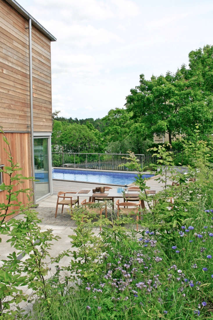 With pleasant summers, a swimming pool with a nearby eating and entertaining area is much used in this garden.