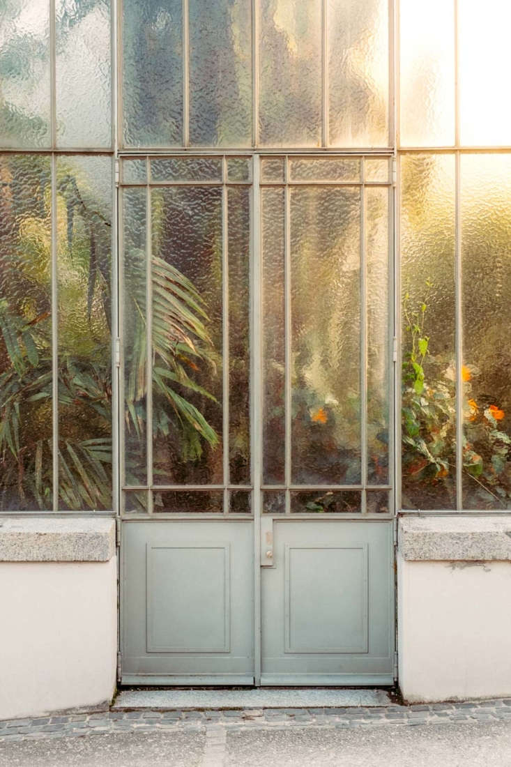 Sometimes framed by the metal structure of the glasshouse and pressed up against the glass as if they are trying to escape, the plants look like prisoners trapped yet protected in their moisture- and temperature-controlled worlds.