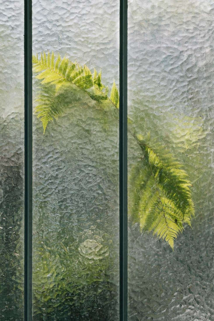 Zeller's parents are artists and there is a painterly quality to his mesmerizing images of plants pressed up against glass that's often frosted or hazy with condensation.