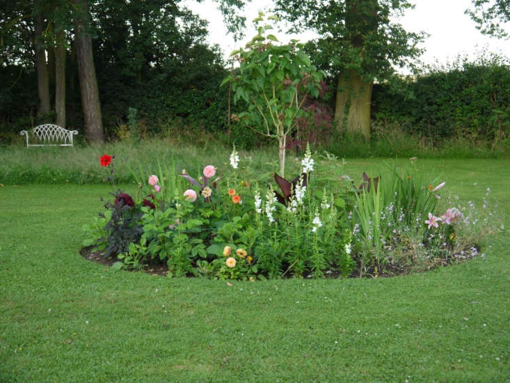 Tropical plants mingle with the dahlias in Charlie Hart&#8\2\17;s English garden.