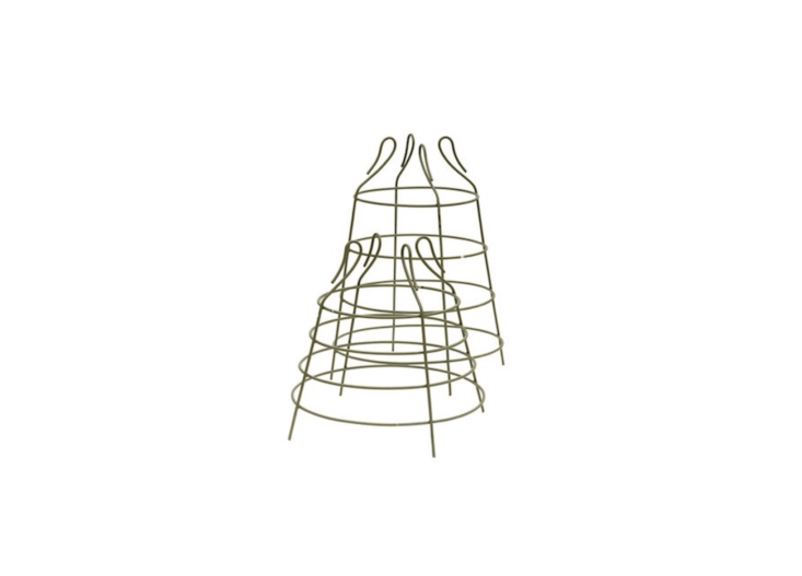 Suitable for use to support dwarf varieties of cherry tomatoes, green iron Cage Plant Supports come in two sizes (about \17.5 and \23 inches high, respectively); £3\2.99 and £39.99 at Crocus.