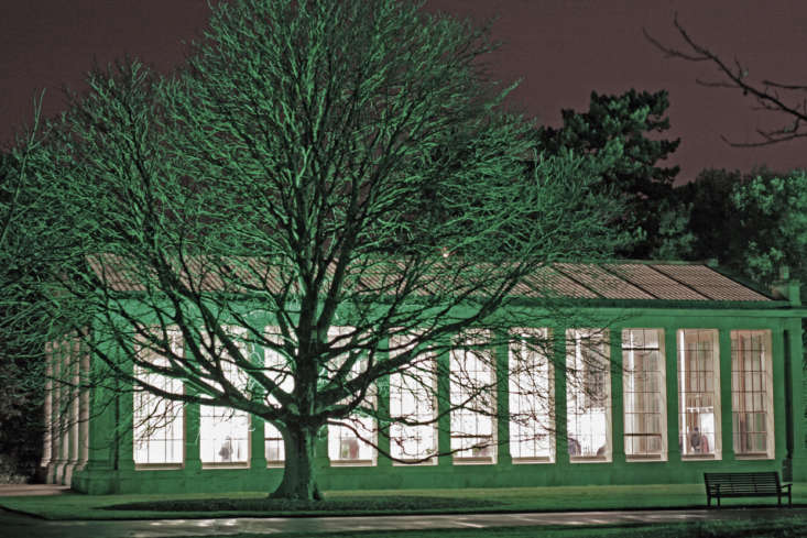 A tree with night lighting next to Kew&#8\2\17;s Nash Conservatory. Photograph by Fimb via Flickr.