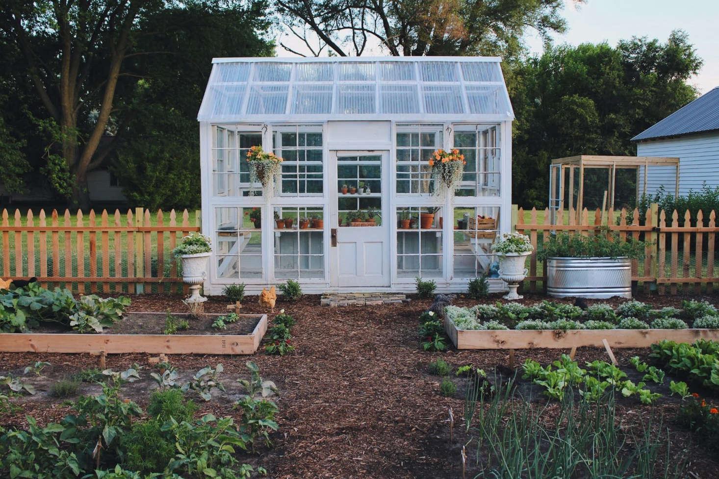 For her residential homestead in Kalona, Iowa, amateur gardenerKayla Haupt won &#8