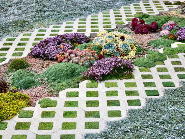 Grass block pavers on a Bay area ribbon driveway, succulents and herbs included. See more of this driveway in Required Reading: Private Gardens of the Bay Area. Photograph by Marion Brenner.