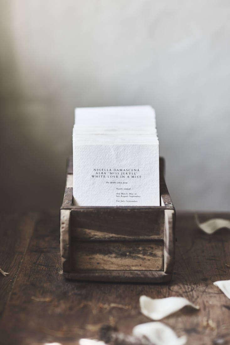 A packet of Nigella Seeds is£
