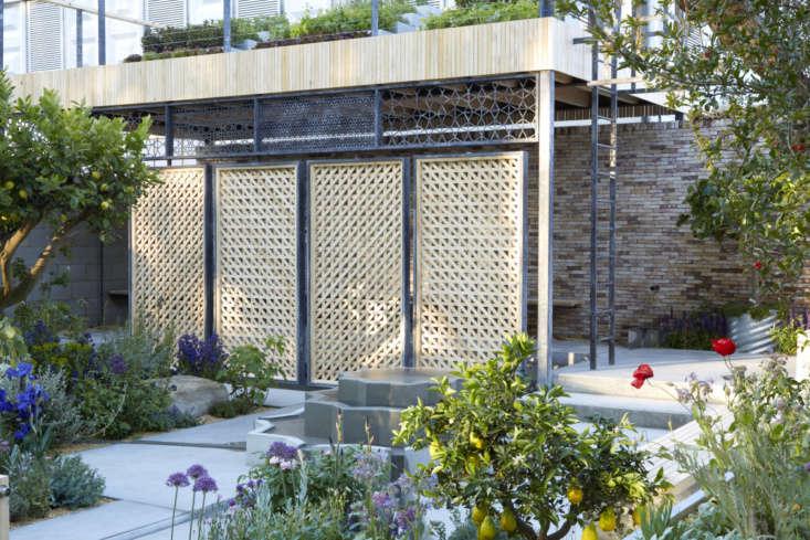 Designer Tom Massey for the Lemon Tree Trust, Chelsea garden .