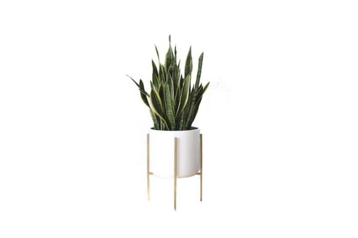 A Large Mid-Century Modern Cylinder Planter with a gold metal stand has a diameter of loading=