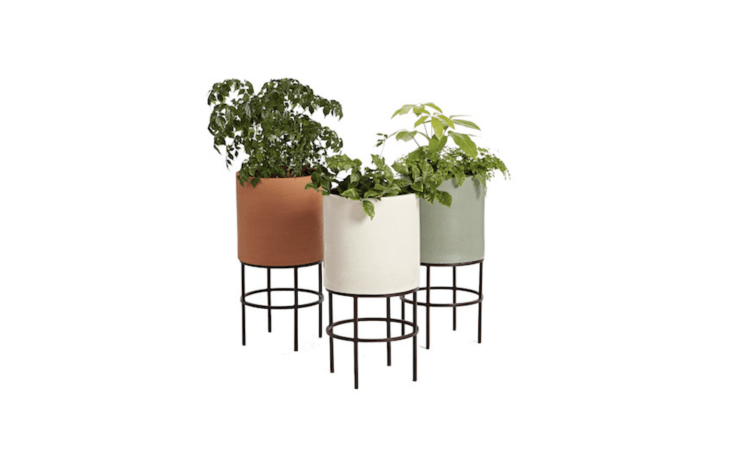Made of hand-thrown clay, a midcentury modern cylinder Clinton Planter is available in three colors (green, terracotta, and white) and has a metal stand. It measures .5 inches high and loading=