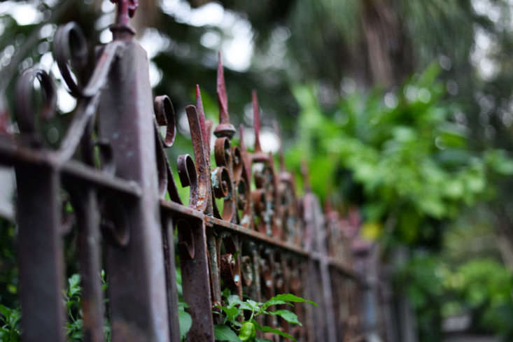 A cast iron fence in New Orleans. Photograph by Enicok via Flickr.