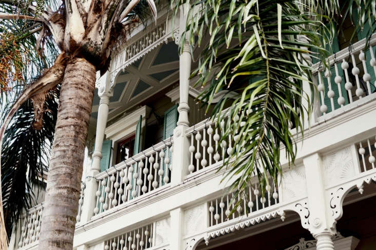 A palm tree shades a balcony in New Orleans&#8