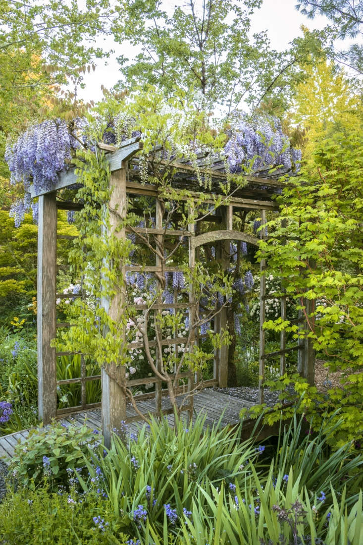 A wisteria-covered bridge leads to and from the long shady border.