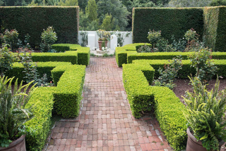 The formal rose garden that had fallen into disrepair by the time Sosa stepped in. &#8