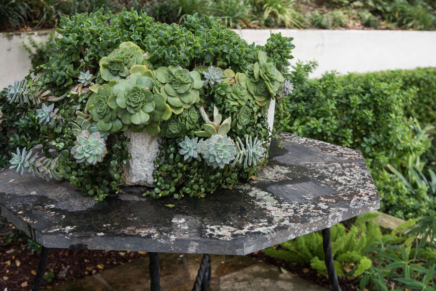 Sosa sourced antique pots from Wells Tile and Antiques, Early California Antiques, and local shops in Santa Barbara, and peppered them throughout the property, like this one, spilling with succulents.