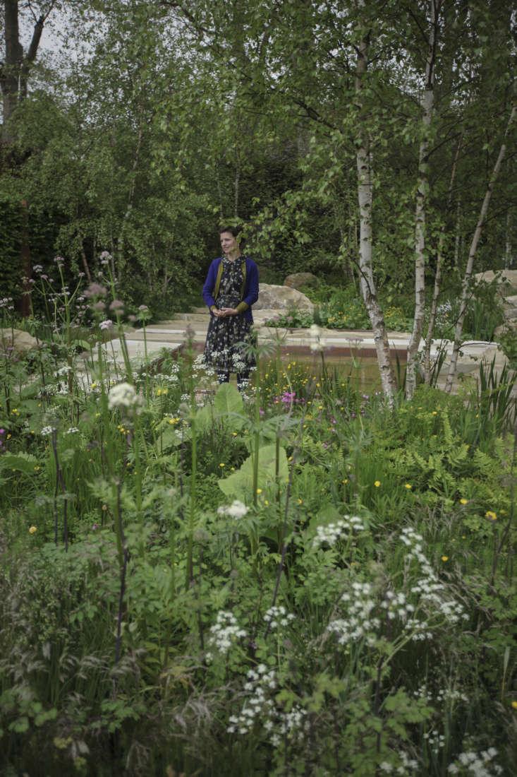 Wildflower appreciator Sarah Price in her gold-medal garden, Chelsea \20\1\2.