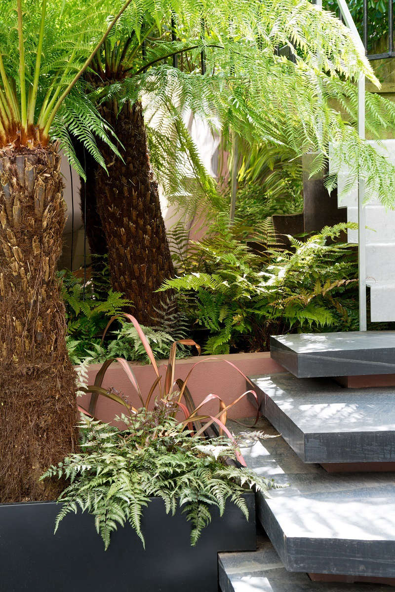 Studio  Architects wonBest UK Professional Landscape last year for this African-inspired garden in London.Photograph by Andrew Beasley.