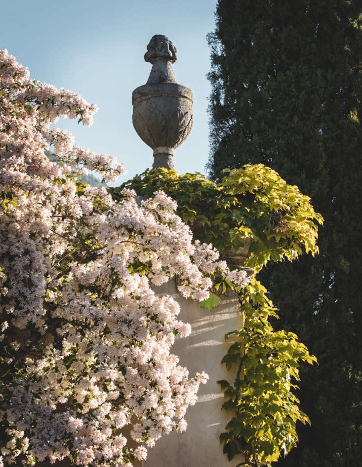 Grand urns peek out from foliage covered pedestals.