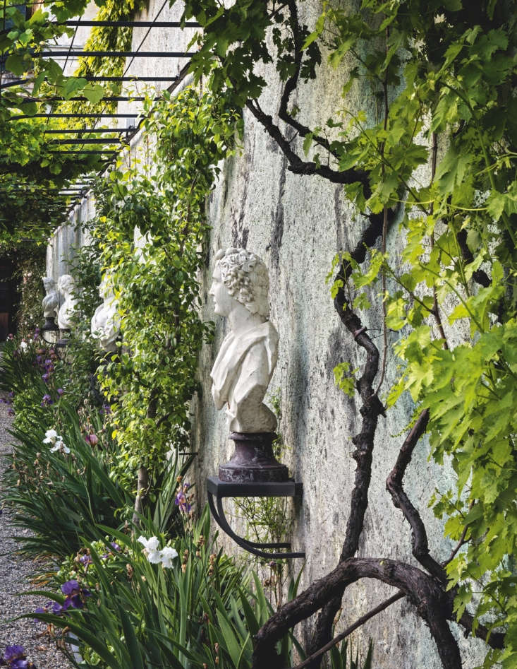 Old vines clamber across an old metal pergola shading the noble busts.