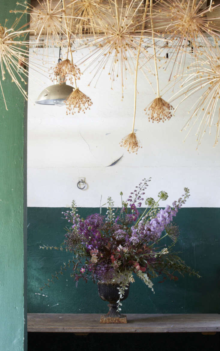 In the workroom at Bayntun Flowers, dried alliums hang from the ceiling.