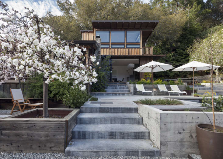 A cherry blossom tree grows next to concrete stairs leading from the new addition to the detached garage.