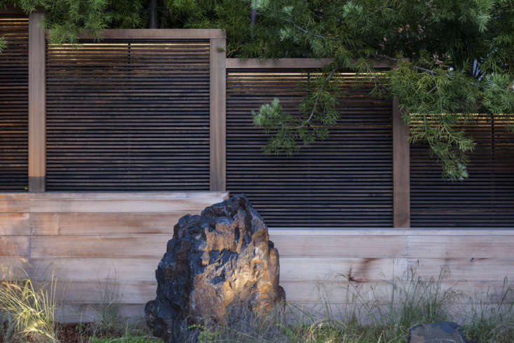 Gargan carefully positioned uplighting throughout the landscape to highlight features like a small rock grove behind the pool.