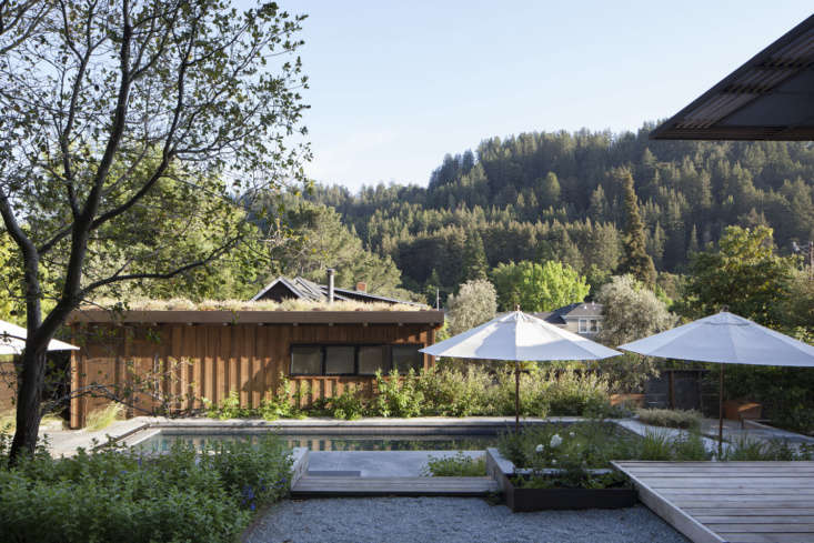 The pool was fittingly sited on the sunniest part of the property. The Corten beds adjacent to the gravel patio are planted with edible flowers and herbs.