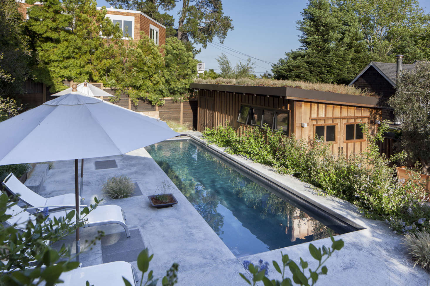 The sunken concrete pool is 36 feet long—enough for swimming laps. On the pool deck,Gargan had plots reserved for plants, both in-ground and in containers.