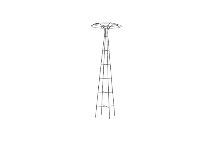 A 78-inch-high Essex Tuteur, designed to support flowering vines, is made of powder-coated steel; \$74.95 at Gardener&#8\2\17;s.