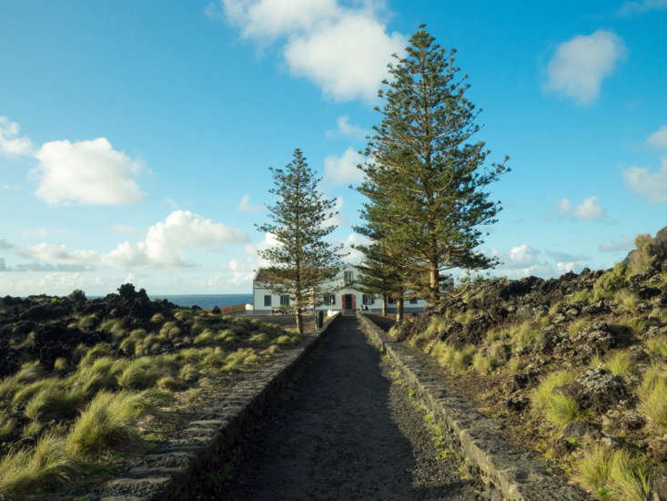 A drought-tolerant landscape flourishes in Varzea on the island of São Miguel in the Azores. Photograph by Ajay Suresh via Flickr.