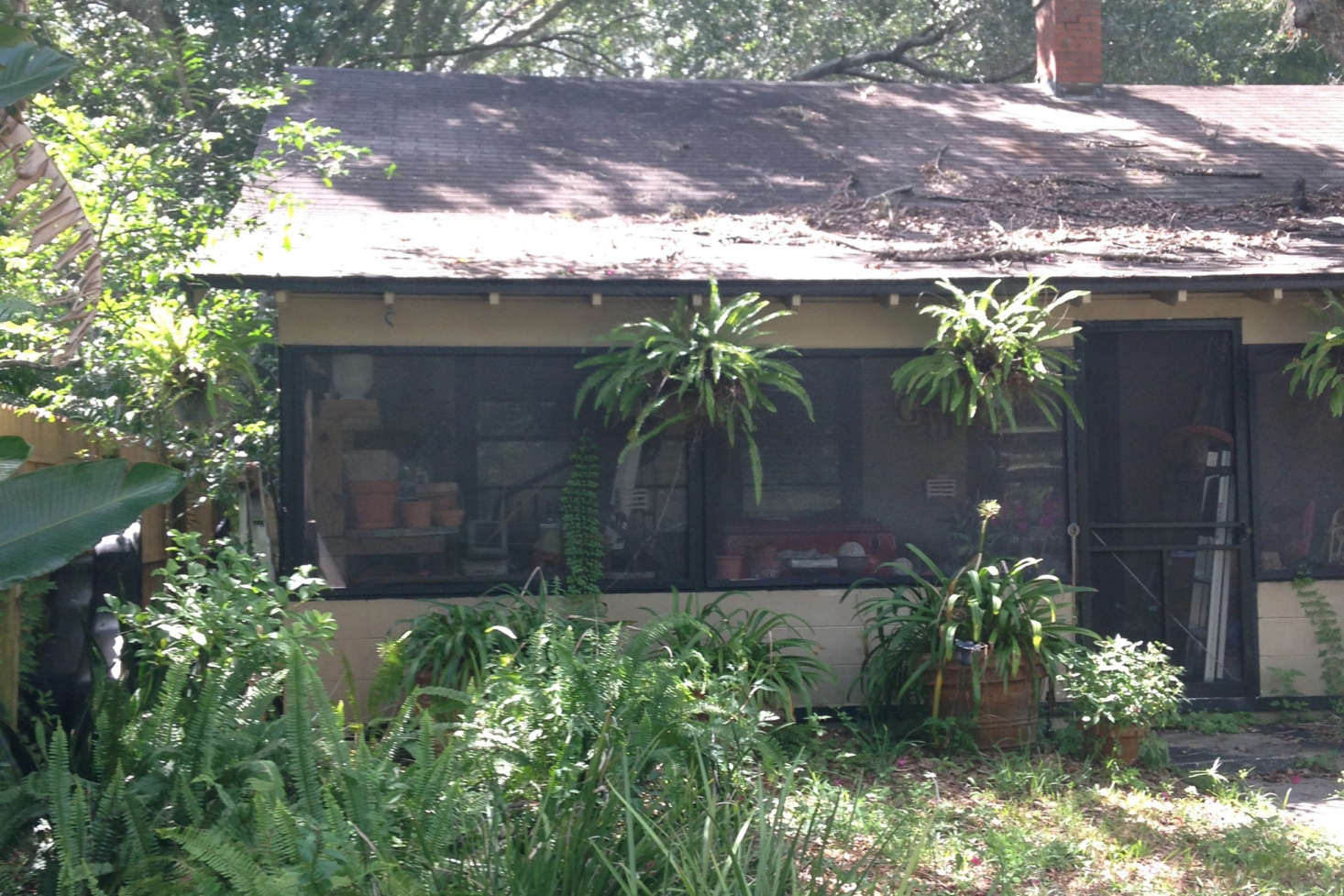 Before, the porch was unusable, and filled to the brim with bric-a-brac, old pots, and storage.