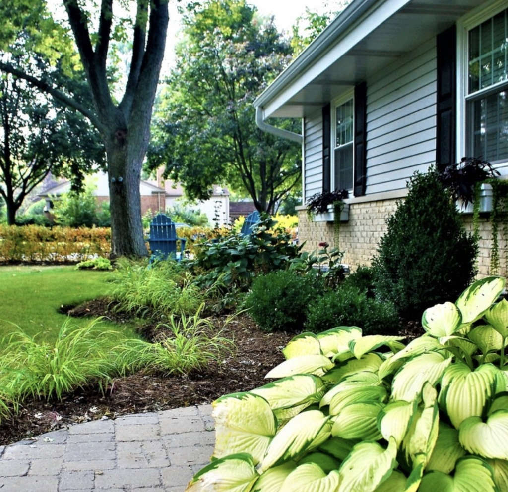 Amliv Land Designs entered thisArlington Heights, Illinois, landscape into our Best Curb Appeal category, which is open to both amateurs and professionals. They transformed an empty corner lot into a shade-loving garden withshrubs, evergreens, and perennials.