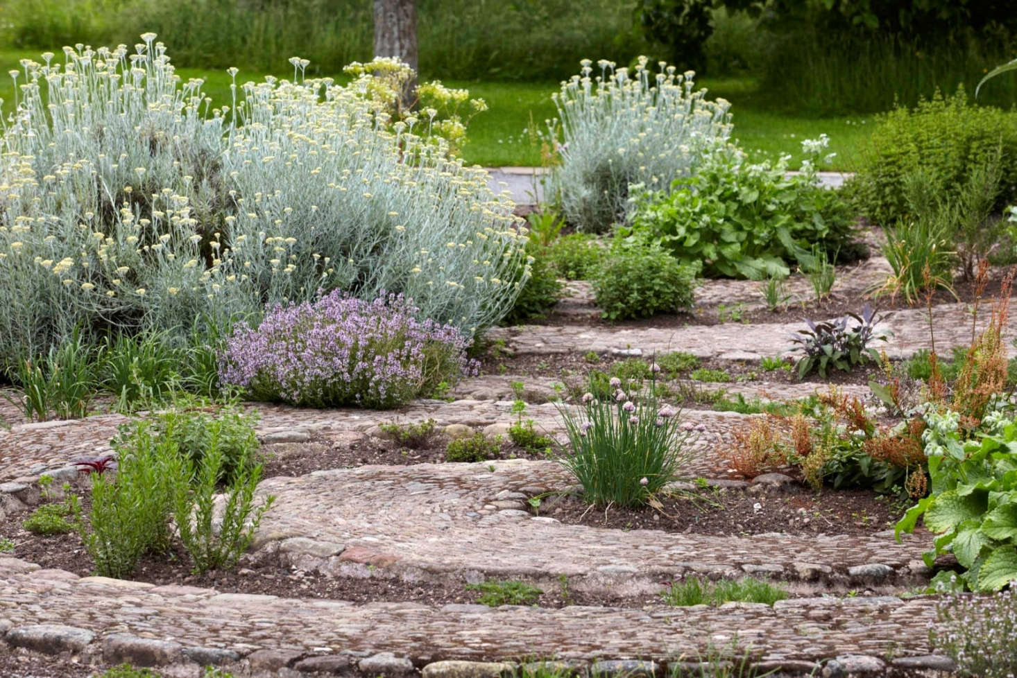 The herb garden is next to the orchard at Hampton Court Castle. Photograph by Britt Willoughby Dyer.