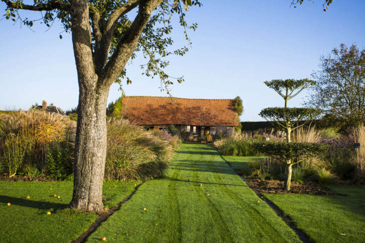 Ideas for dividing a lawn. A classic French allée, marked out in the simplest way, with earth gutters on either side.