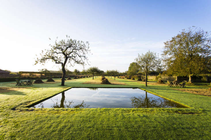 Visible beyond the pool are the silhouettes of apple trees young and old, in the orchard.