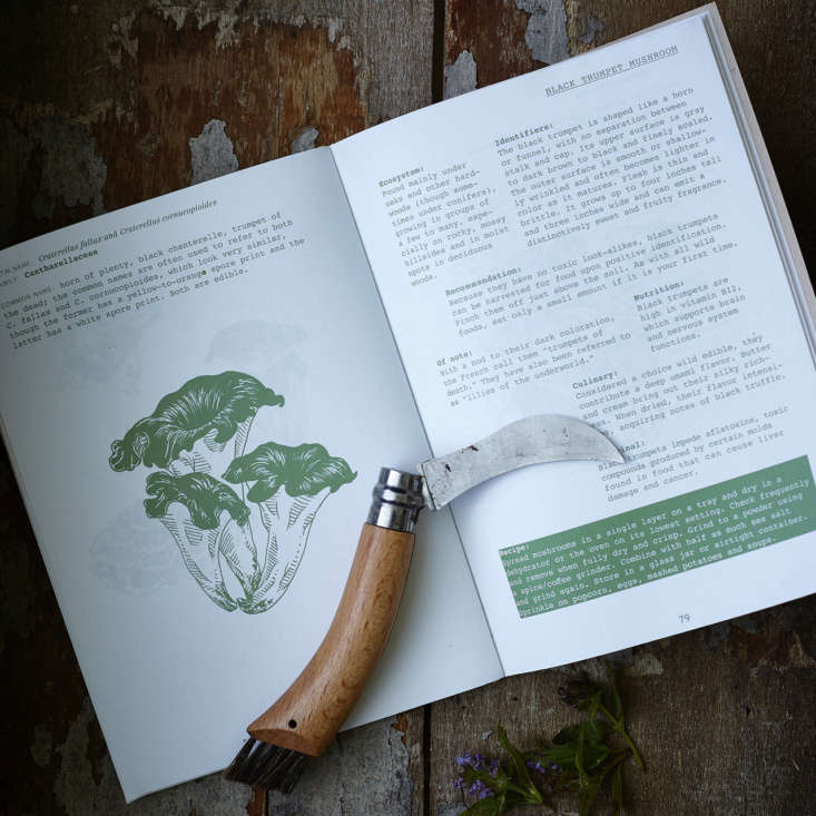 An entry on black trumpet mushrooms includes an illustration to help visually identify the fungus.