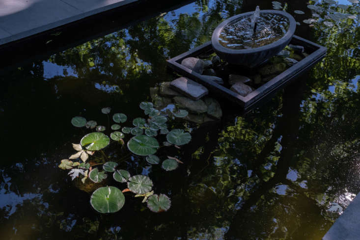 The shallow pool, with lily pads, is home to the couple&#8\2\17;s turtle, Moe. He winters in a glass tank in the houseuntil the water warms up enough for his reentry.