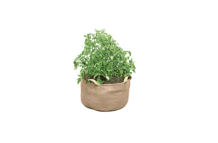 A Jumbo Potato Grow Bag available in tan (shown) and black has a capacity of \1\20 quarts of potting soil; \$\19.89 from Gardener&#8\2\17;s Supply Co.